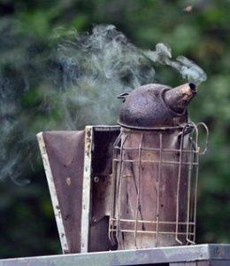 smoking Bees