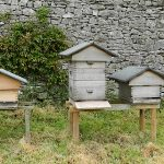 Locating Beehive