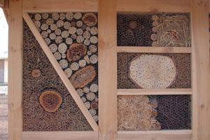 mason bee garden house